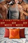 Boy Meets Boy Meets Boy