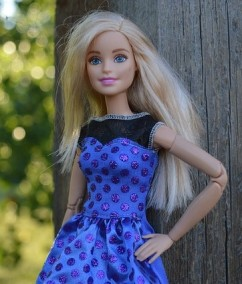 Picture of Barbie doll in blue dress